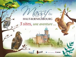 Chateau de Haut Koenigsbourg, Montage des singes, Volerie des aigles Sélestat